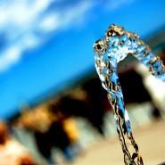 Необходимое количество воды для человека